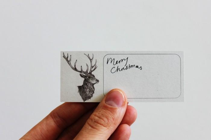 Deer_tag_6